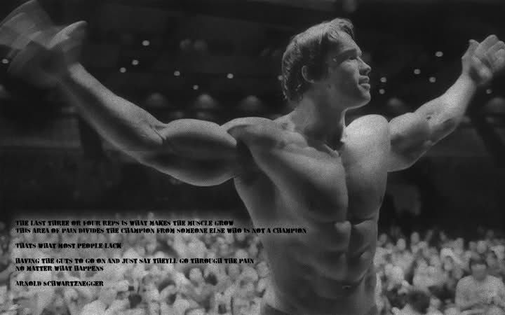 Arnold Motivational Wallpapers: Arnold Motivational Quotes Wallpaper. QuotesGram
